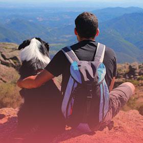 Man-dog-relationship